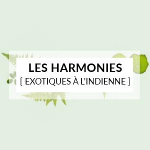 Les harmonies exotiques à l'indienne