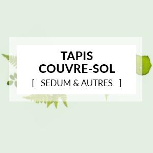 Les Tapis couvre-sol